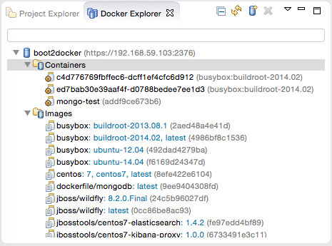 Docker Explorer view