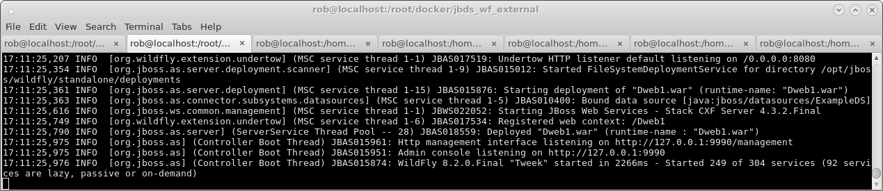 JBoss Tools - Docker and WildFly Part 1 - Deployment via